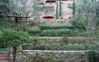 Tips For a Successful Landscape Design