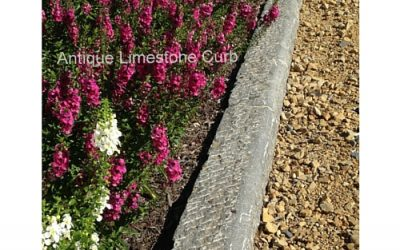 10 Ways to Make Your Landscape Environmentally Friendly